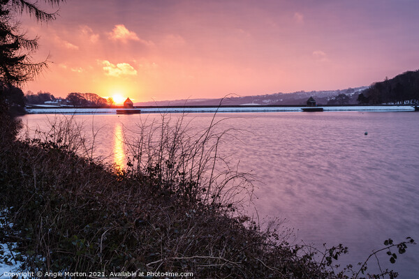 Damflask Winter Sunrise Canvas Print by Angie Morton