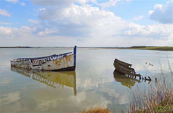 Maldon shipwrecks  Canvas Print by Diana Mower