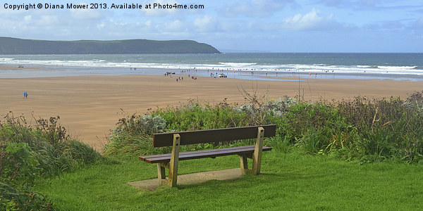 Woolacombe Bay Canvas print by Diana Mower