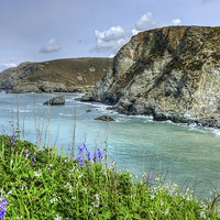 Buy canvas prints of St Agnes Cornwall by Diana Mower
