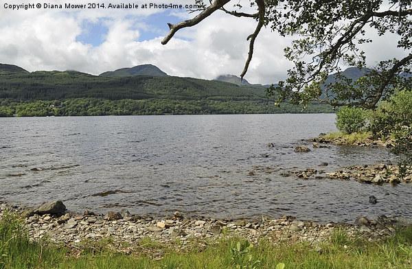 Loch Lomond Canvas print by Diana Mower