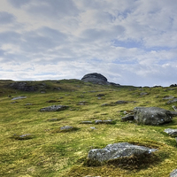 Buy canvas prints of  Haytor Dartmoor by Diana Mower