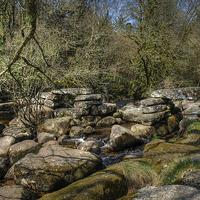 Buy canvas prints of The East Dart, Dartmoor  by Diana Mower