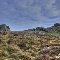 Buy canvas prints of  Haytor Dartmoor by Diana Mower