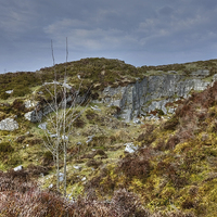 Buy canvas prints of  Haytor  Quarry Dartmoor by Diana Mower