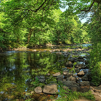 Buy canvas prints of Summer on the Dart  by Diana Mower