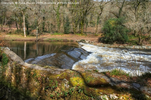 The River Dart at Holne Weir. Canvas print by Diana Mower
