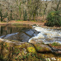 Buy canvas prints of The River Dart at Holne Weir. by Diana Mower