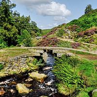 Buy canvas prints of Bronte Bridge in Summer by Diana Mower