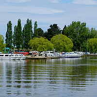 Buy canvas prints of River Waveney Boats by Diana Mower