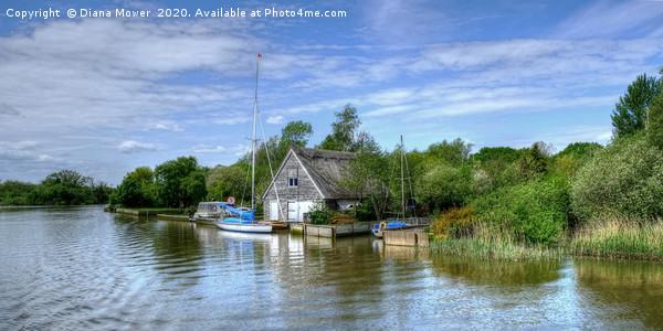 The River Waveney Suffolk Print by Diana Mower