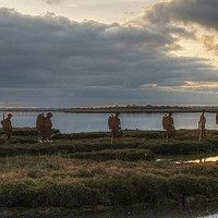 Buy canvas prints of Mersea Island Silhouettes Panoramic by Diana Mower