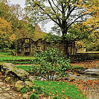 Buy canvas prints of Wycoller Packhorse bridge by Diana Mower