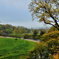Buy canvas prints of Bolton Abbey Ruins  by Diana Mower