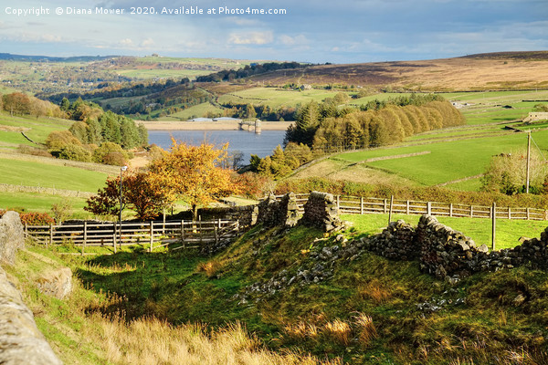 Lower Laithe Reservoir Yorkshire Dales Canvas print by Diana Mower