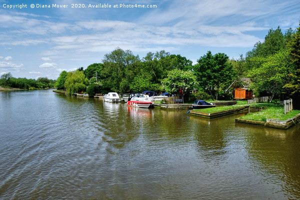 The Picturesque River Waveney   Print by Diana Mower