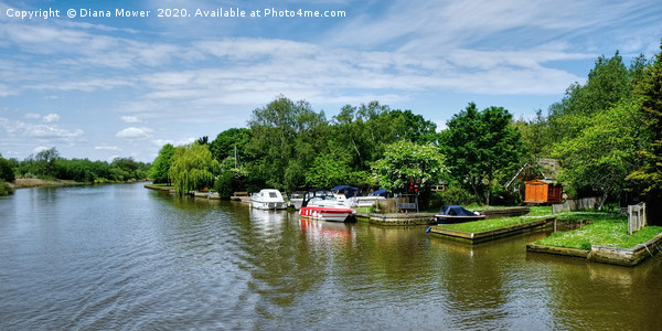 Picturesque River Waveney  Print by Diana Mower