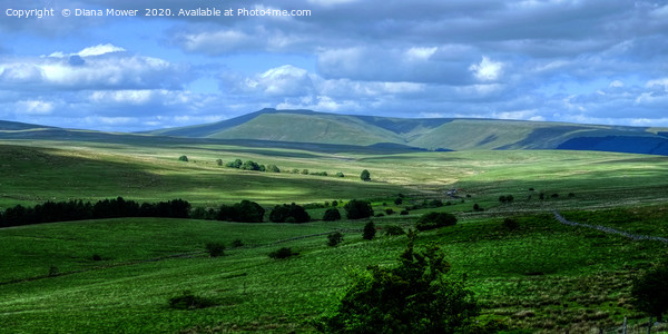Brecon Beacons Pen y Fan Wales Canvas Print by Diana Mower