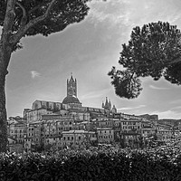 Buy canvas prints of Siena in monochrome by Diana Mower