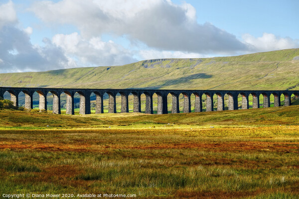 Ribblehead Viaduct Settle Carlisle line, Yorkshire Canvas Print by Diana Mower