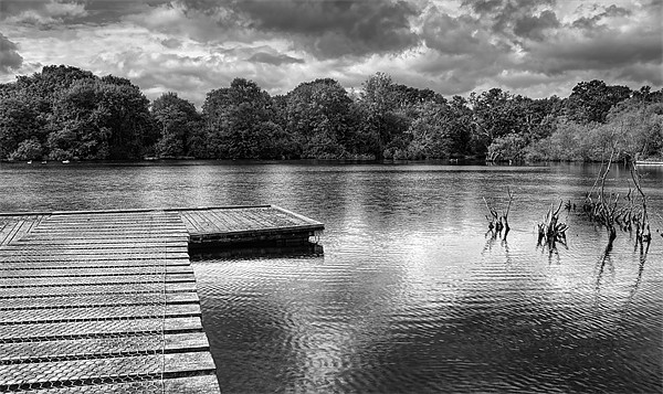 Across The Pond. Canvas print by Louise Wagstaff