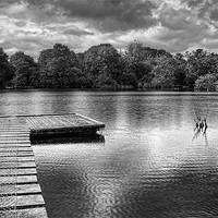 Buy canvas prints of Across The Pond. by Louise Wagstaff