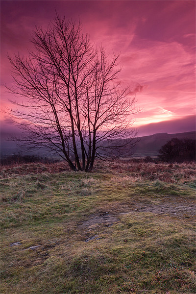 Red Sky in the Morning Canvas print by Jonathan Swetnam