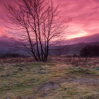 Buy canvas prints of Red Sky in the Morning by Jonathan Swetnam
