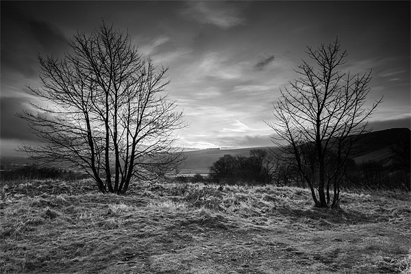 Hope Valley Black and White Canvas print by Jonathan Swetnam