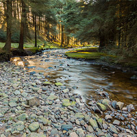 Buy canvas prints of Lady Clough by Jonathan Swetnam