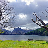 Buy canvas prints of               BUTTERMERE                  by Anthony Kellaway
