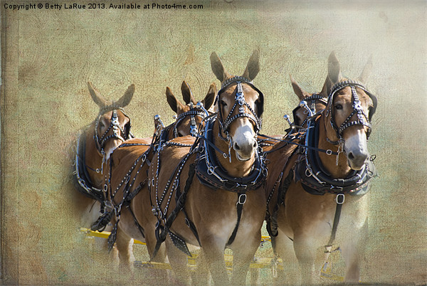 Old West Mule Train Canvas print by Betty LaRue Canvas and Prints