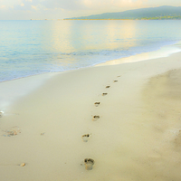 Buy canvas prints of Footprints to Nowhere by Betty LaRue Canvas and Prints