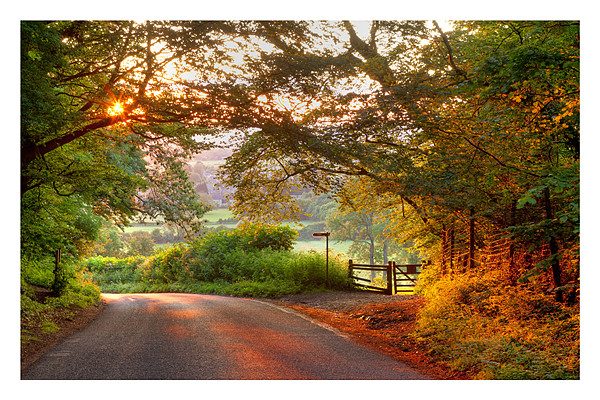 Mickleton Canvas print by Andrew Roland