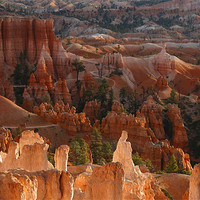 Buy canvas prints of Bryce Canyon by peter schickert