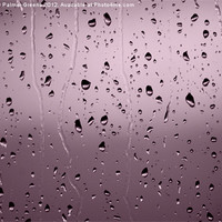 Buy canvas prints of Rain Drops by Anthony Palmer-Greene