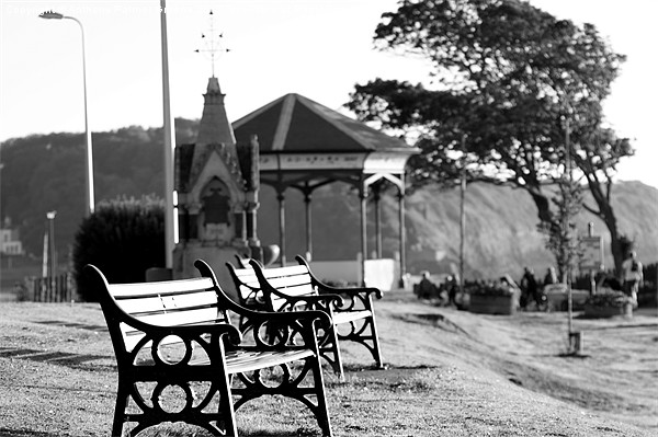 Clevedon Seafront Canvas print by Anthony Palmer-Greene