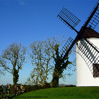 Buy canvas prints of Sail shadow on Ashton windmill by Paula Palmer canvas & prints