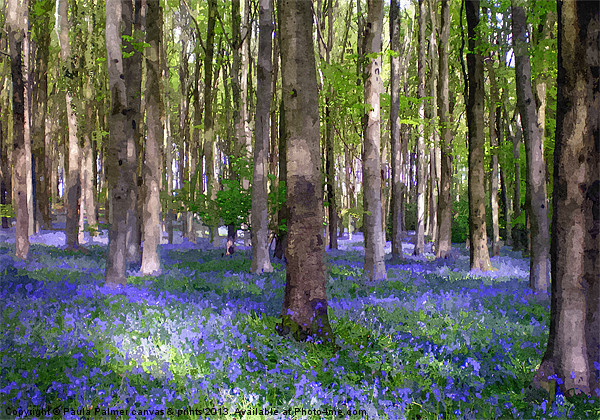 A carpet of bluebells! Canvas print by Paula Palmer canvas & prints
