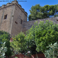 Buy canvas prints of View of Castle Denia Spain by Roger Wain
