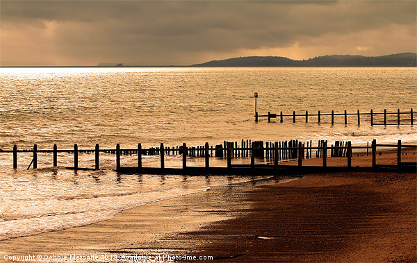 Dawlish Warren Canvas print by Debbie Metcalfe