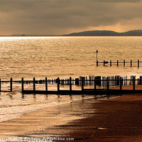 Buy canvas prints of Dawlish Warren by Debbie Metcalfe