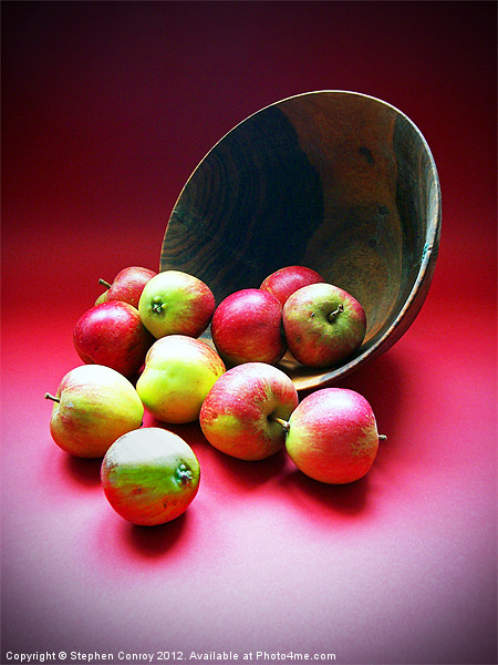 Still Life with Apples Canvas print by Stephen Conroy