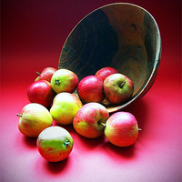 Buy canvas prints of Still Life with Apples by Stephen Conroy