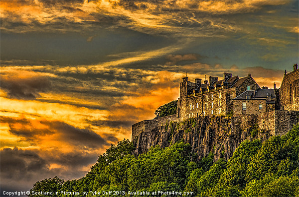 Stirling Castle Scotland Canvas Print by Scotland In Pictures  by Tylie Duff