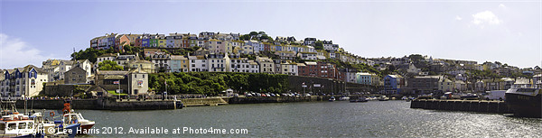 Brixham Village Canvas print by Lee Harris