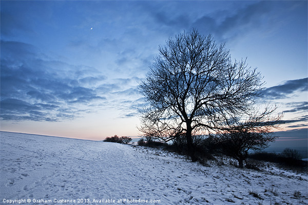 Winter Tree Canvas print by UK Landscape Canvas by Graham Custance