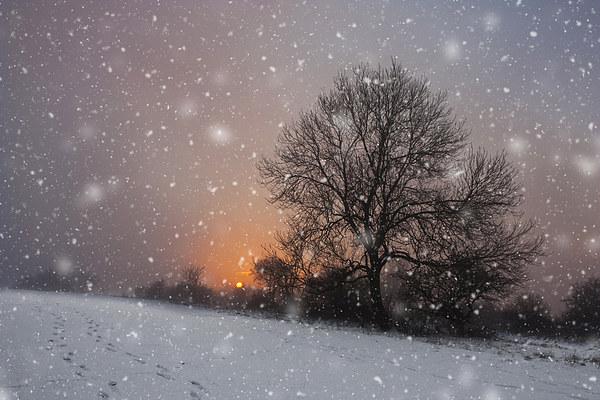 Winter Wonderland Canvas print by UK Landscape Canvas by Graham Custance