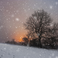 Buy canvas prints of Winter Wonderland by UK Landscape Canvas by Graham Custance