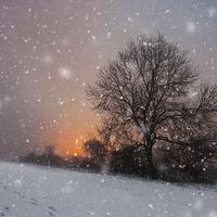 Buy canvas prints of Winter Wonderland by UK Landscape Canvas by Graham Custance